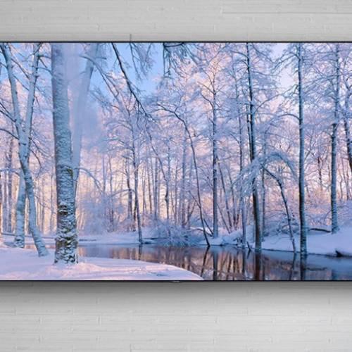 LG OLED TV vs SAMSUNG QLED TV